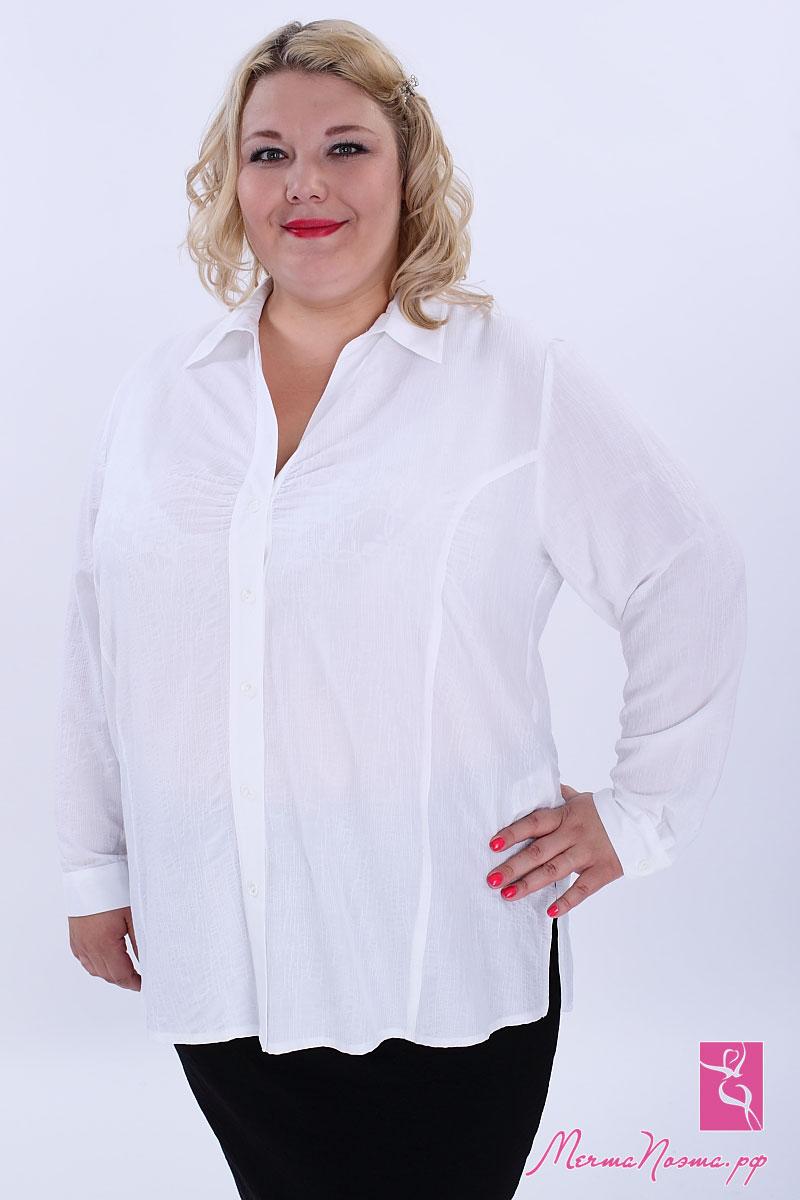 Белые Блузки Большие Размеры Купить